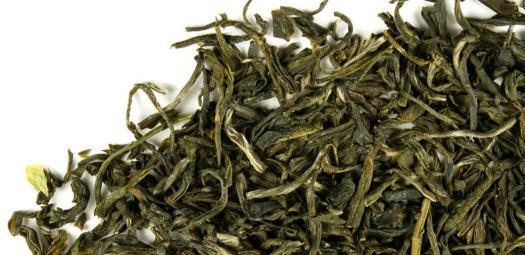 jasmine tea crop